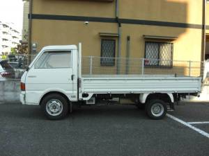 1996 brawnny truck -1